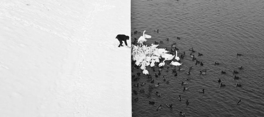 картинки в чёрно белом цвете