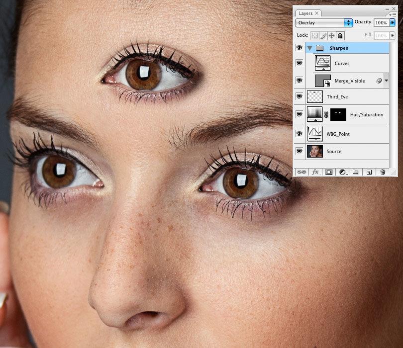 нем программы для улучшения резкости фотографий волчий серый глазки