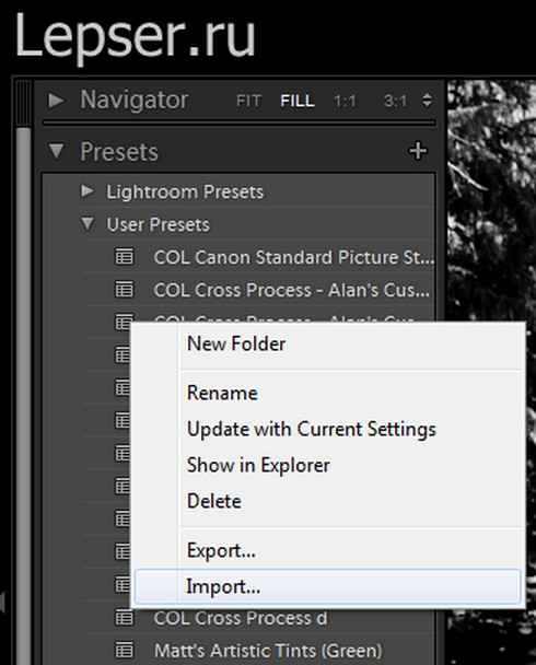 how-to-add-presets-to-lightroom-photo-editing-sample